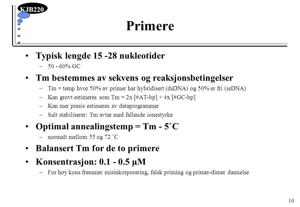 KJB220 10 Primere Typisk lengde 15 -28 nukleotider –50 - 60% GC Tm bestemmes av sekvens og reaksjonsbetingelser –Tm = temp hvor 50% av primer har hybr