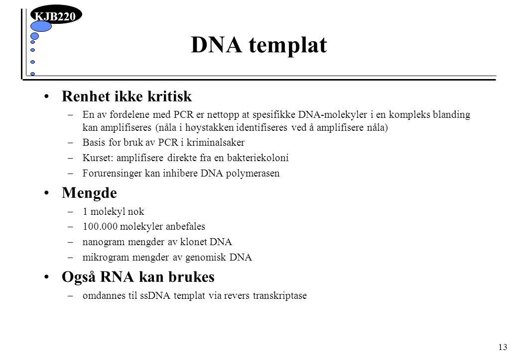 KJB220 13 DNA templat Renhet ikke kritisk –En av fordelene med PCR er nettopp at spesifikke DNA-molekyler i en kompleks blanding kan amplifiseres (nål