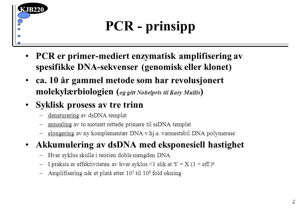KJB220 13 DNA templat Renhet ikke kritisk –En av fordelene med PCR er nettopp at spesifikke DNA-molekyler i en kompleks blanding kan amplifiseres (nåla i høystakken identifiseres ved å amplifisere nåla) –Basis for bruk av PCR i kriminalsaker –Kurset: amplifisere direkte fra en bakteriekoloni –Forurensinger kan inhibere DNA polymerasen Mengde –1 molekyl nok –100.000 molekyler anbefales –nanogram mengder av klonet DNA –mikrogram mengder av genomisk DNA Også RNA kan brukes –omdannes til ssDNA templat via revers transkriptase