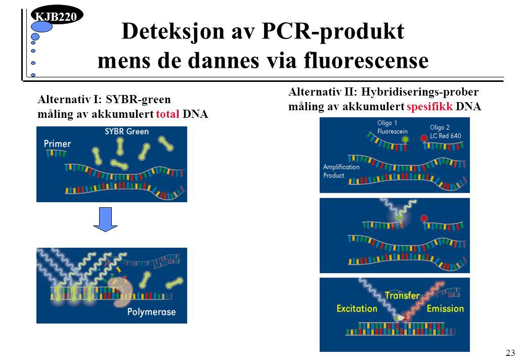 KJB220 23 Deteksjon av PCR-produkt mens de dannes via fluorescense Alternativ I: SYBR-green måling av akkumulert total DNA Alternativ II: Hybridiserin