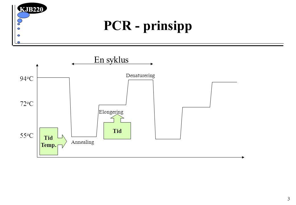 KJB220 14 PCR-maskiner og rør Maskiner: programmerbar varmeblokk Hold-time må være tilstrekkelig til temp.likevekt PCR-rør: tykkelsen av plastveggen bestemmer tid for temp.likevekt –polypropylen tynnveggede optimalt –Ned til 15 sek ekvilibreringstid Problem med fordampning: –Oljedekke over –Varme i lokk hindrer kondensasjon og væsketransport Olje PCR-mix Varme i lokk hindrer kondens PCR-mix