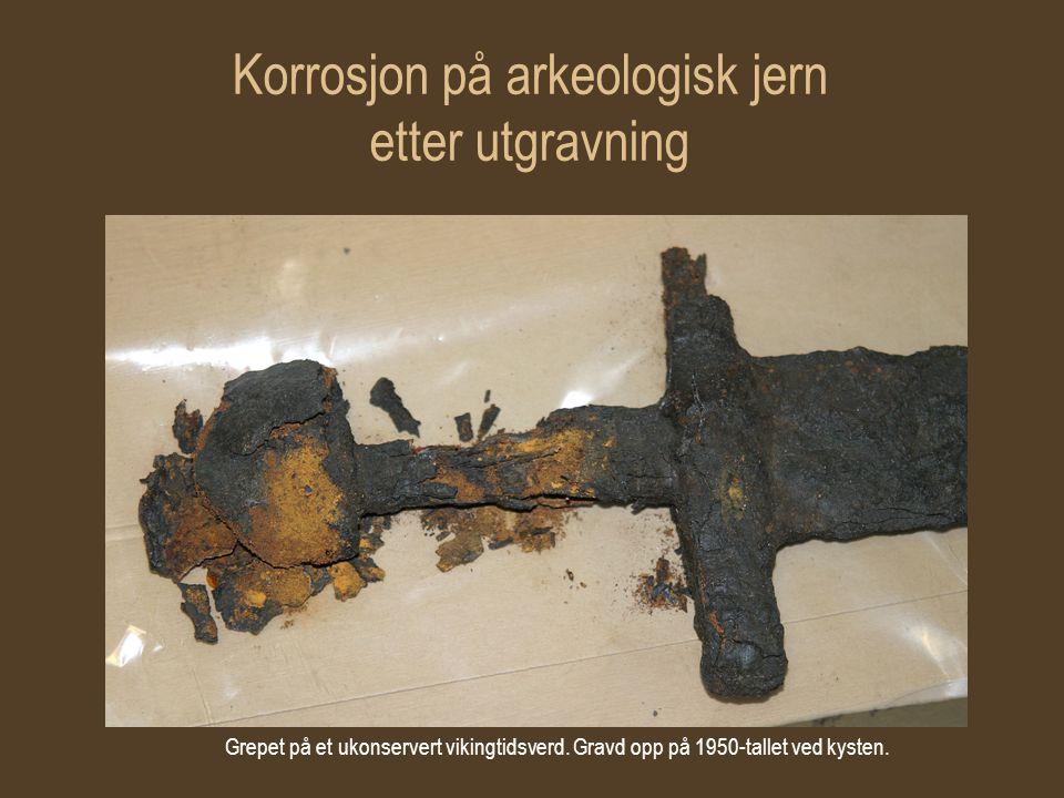 Korrosjon på arkeologisk jern etter utgravning Grepet på et ukonservert vikingtidsverd. Gravd opp på 1950-tallet ved kysten.