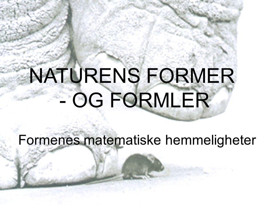 Naturens former – og formler Formenes matematiske hemmeligheter NATURENS FORMER - OG FORMLER Formenes matematiske hemmeligheter