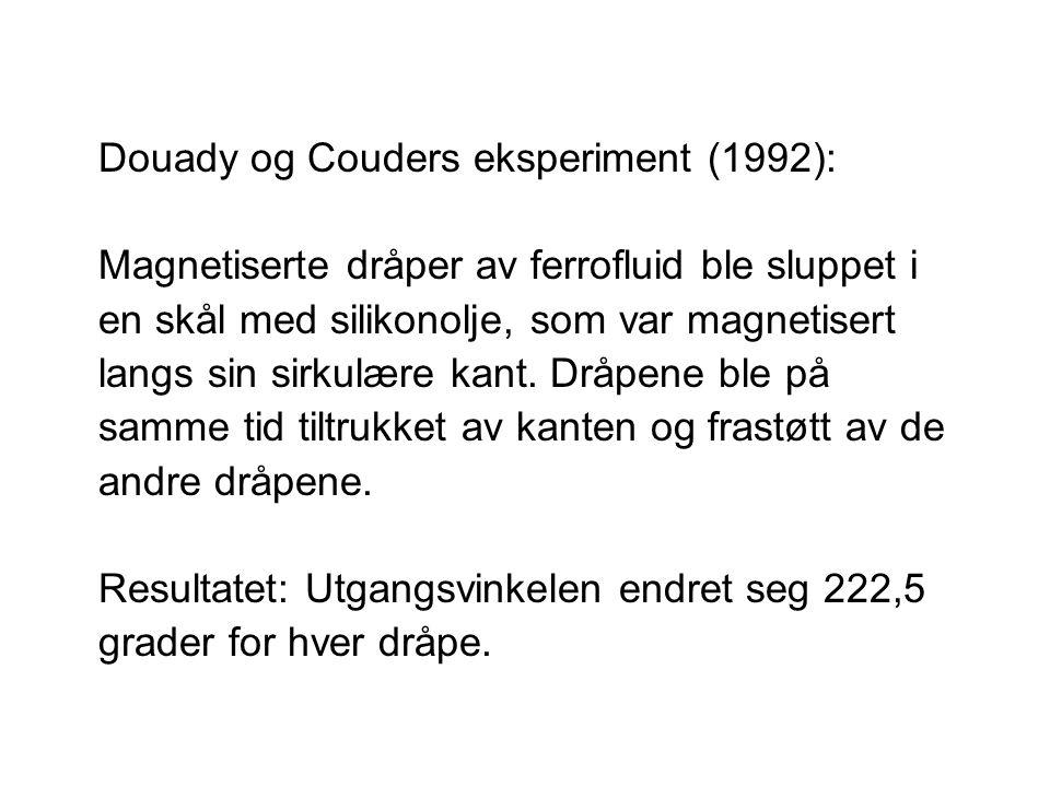 Douady og Couders eksperiment (1992): Magnetiserte dråper av ferrofluid ble sluppet i en skål med silikonolje, som var magnetisert langs sin sirkulære