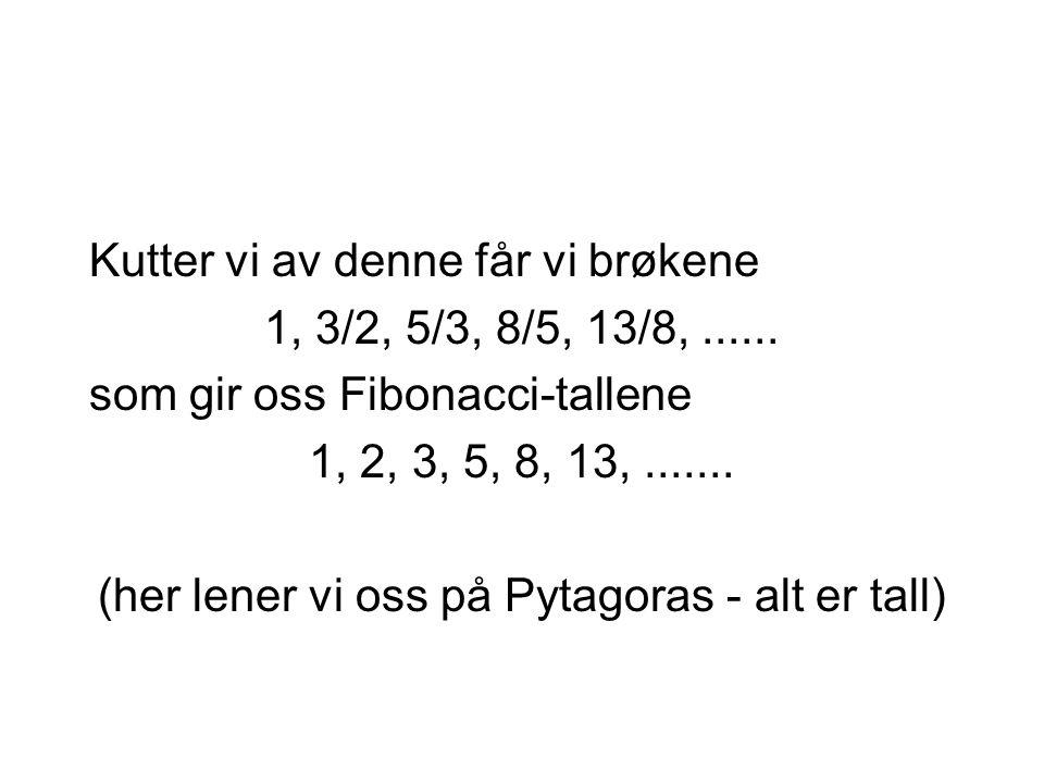 Kutter vi av denne får vi brøkene 1, 3/2, 5/3, 8/5, 13/8,...... som gir oss Fibonacci-tallene 1, 2, 3, 5, 8, 13,....... (her lener vi oss på Pytagoras