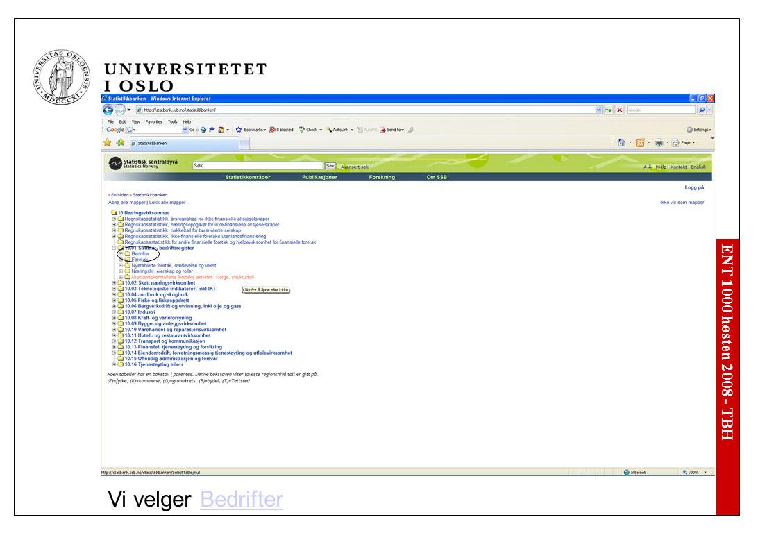 ENT 1000 høsten 2008 - TBH Vi velger BedrifterBedrifter