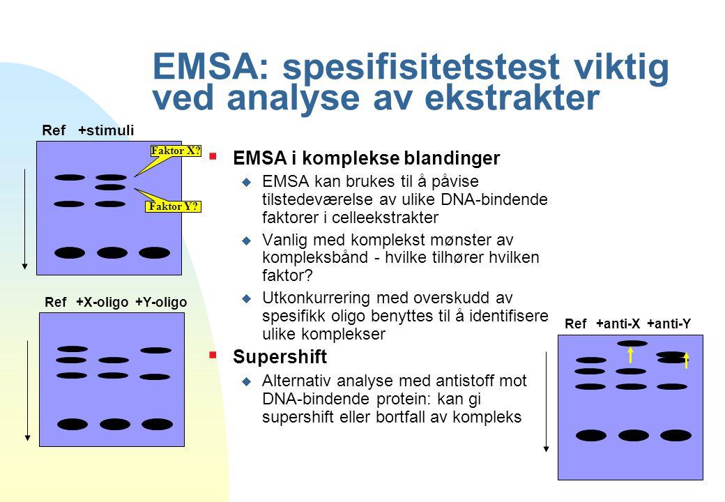 EMSA: spesifisitetstest viktig ved analyse av ekstrakter  EMSA i komplekse blandinger  EMSA kan brukes til å påvise tilstedeværelse av ulike DNA-bin