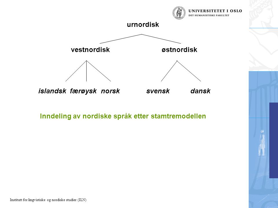 Institutt for lingvistiske og nordiske studier (ILN) urnordisk vestnordisk østnordisk islandsk færøysk norsk svensk dansk Inndeling av nordiske språk