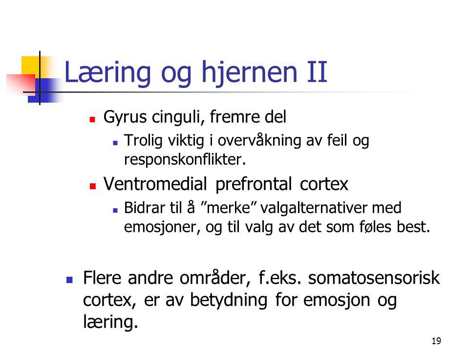 19 Læring og hjernen II Gyrus cinguli, fremre del Trolig viktig i overvåkning av feil og responskonflikter. Ventromedial prefrontal cortex Bidrar til