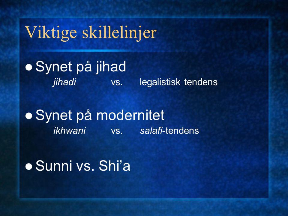 Viktige skillelinjer Synet på jihad jihadivs.legalistisk tendens Synet på modernitet ikhwanivs. salafi-tendens Sunni vs. Shi'a
