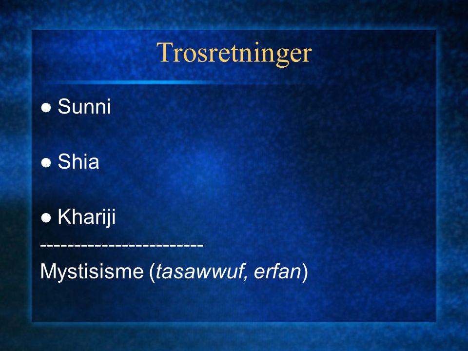 Viktige skillelinjer Synet på jihad jihadivs.legalistisk tendens Synet på modernitet ikhwanivs.