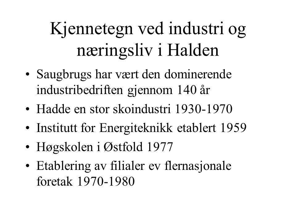 Kjennetegn ved industri og næringsliv i Halden Saugbrugs har vært den dominerende industribedriften gjennom 140 år Hadde en stor skoindustri 1930-1970 Institutt for Energiteknikk etablert 1959 Høgskolen i Østfold 1977 Etablering av filialer ev flernasjonale foretak 1970-1980