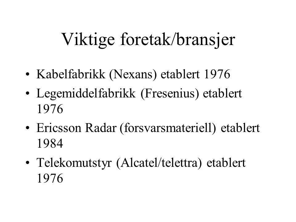 Viktige foretak/bransjer Kabelfabrikk (Nexans) etablert 1976 Legemiddelfabrikk (Fresenius) etablert 1976 Ericsson Radar (forsvarsmateriell) etablert 1984 Telekomutstyr (Alcatel/telettra) etablert 1976