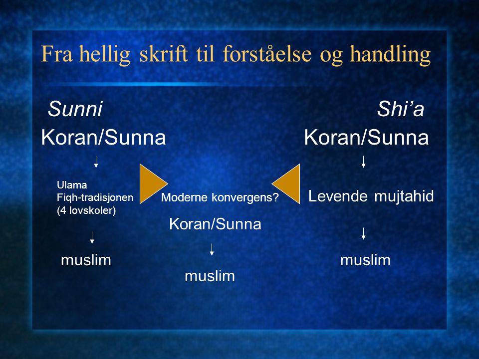 Fra hellig skrift til forståelse og handling SunniShi'a Koran/Sunna Ulama Fiqh-tradisjonen (4 lovskoler) Levende mujtahid muslim Moderne konvergens? K