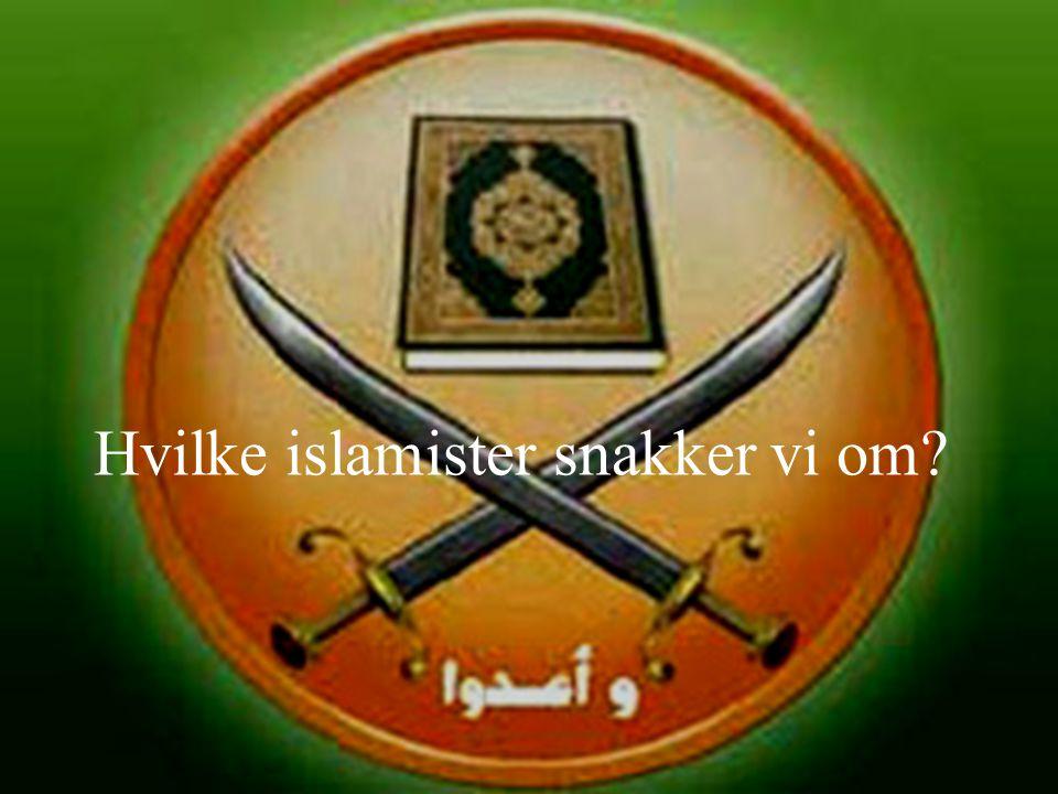 Hvilke islamister snakker vi om?