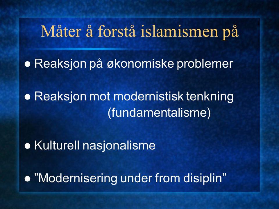 """Måter å forstå islamismen på Reaksjon på økonomiske problemer Reaksjon mot modernistisk tenkning (fundamentalisme) Kulturell nasjonalisme """"Moderniseri"""