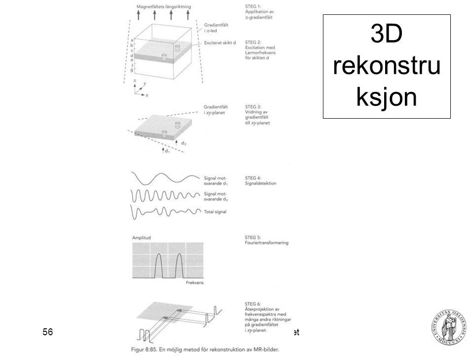 Fysisk institutt - Rikshospitalet 56 3D rekonstru ksjon