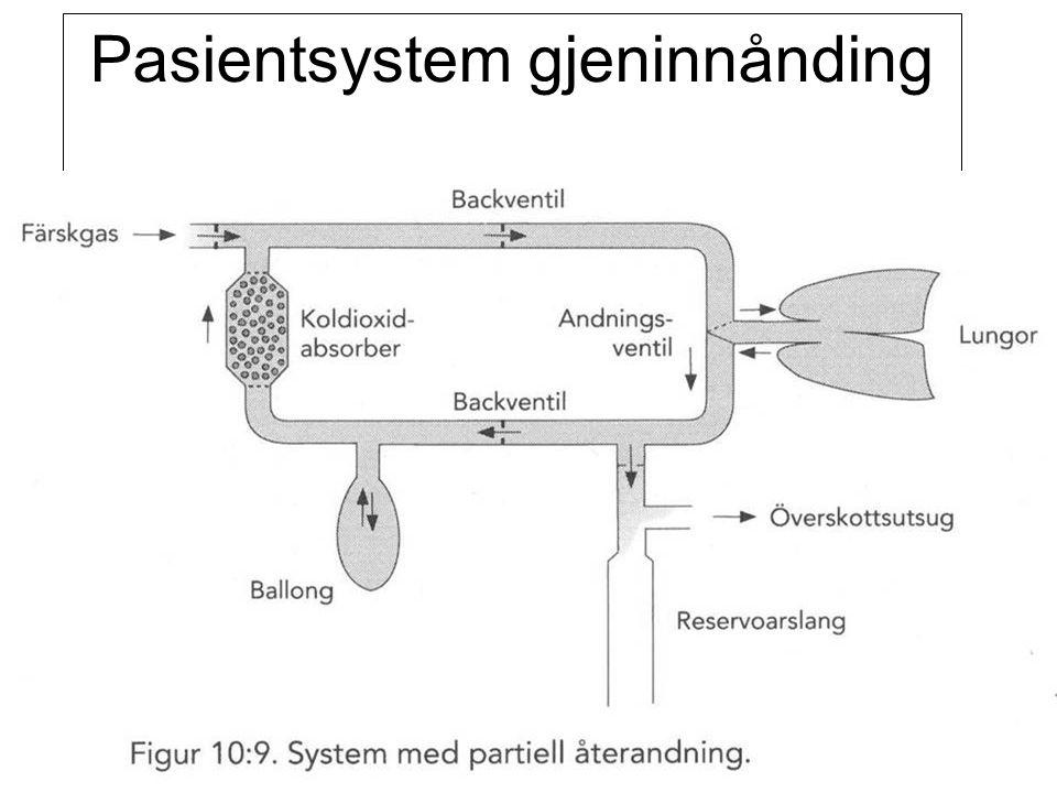 Fysisk institutt - Rikshospitalet 86 Pasientsystem gjeninnånding