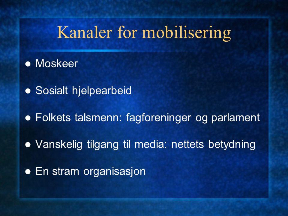 Kanaler for mobilisering Moskeer Sosialt hjelpearbeid Folkets talsmenn: fagforeninger og parlament Vanskelig tilgang til media: nettets betydning En s