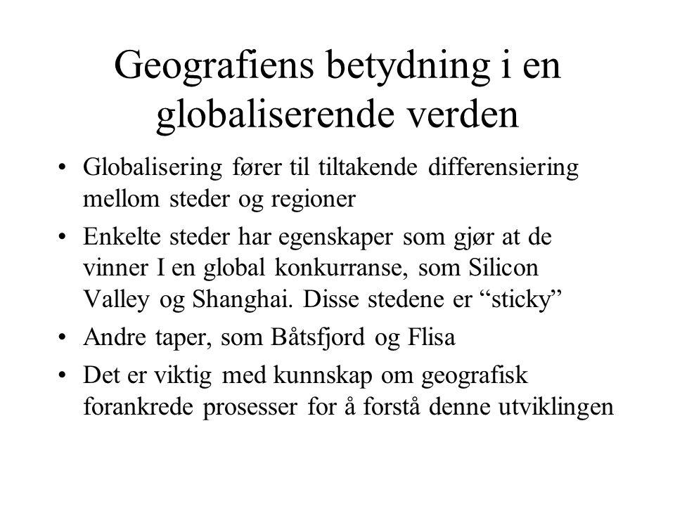 Geografiens betydning i en globaliserende verden Globalisering fører til tiltakende differensiering mellom steder og regioner Enkelte steder har egens