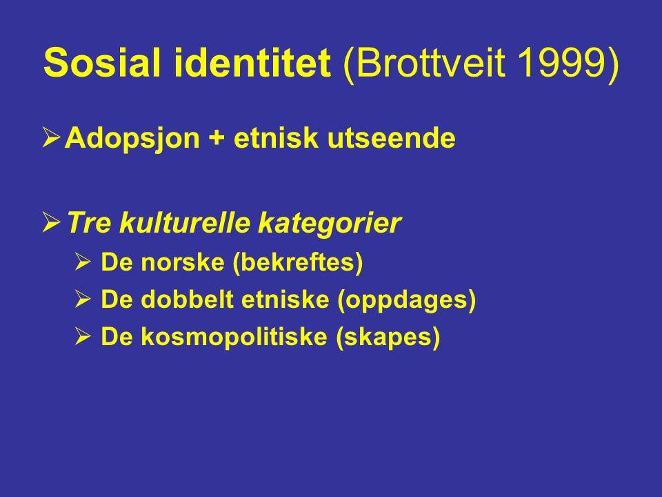 Sosial identitet (Brottveit 1999)  Adopsjon + etnisk utseende  Tre kulturelle kategorier  De norske (bekreftes)  De dobbelt etniske (oppdages)  De kosmopolitiske (skapes)