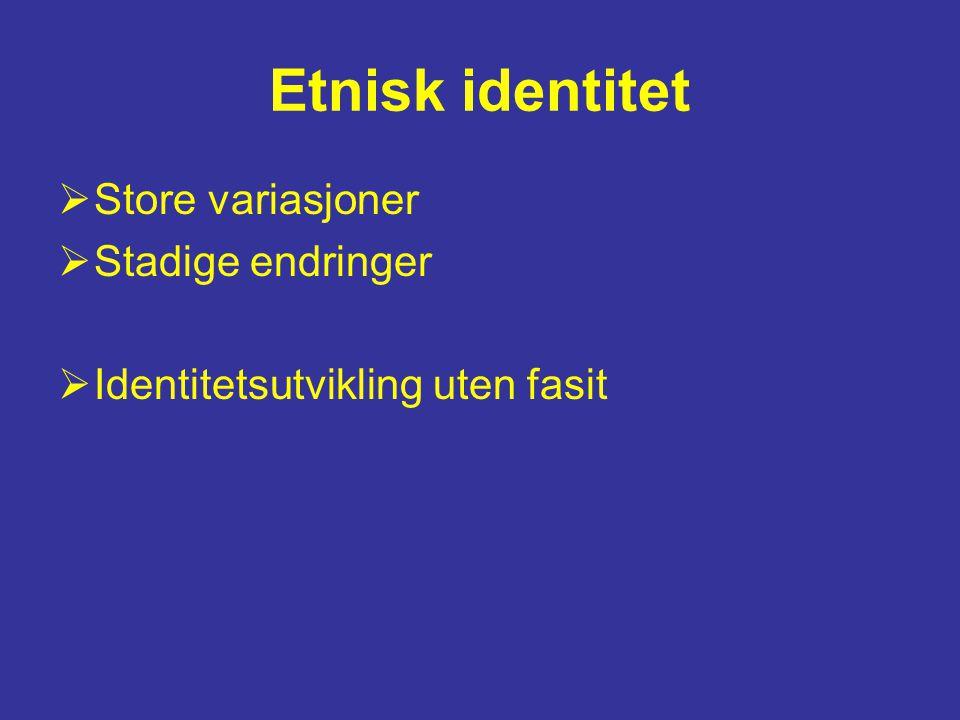 Etnisk identitet  Store variasjoner  Stadige endringer  Identitetsutvikling uten fasit