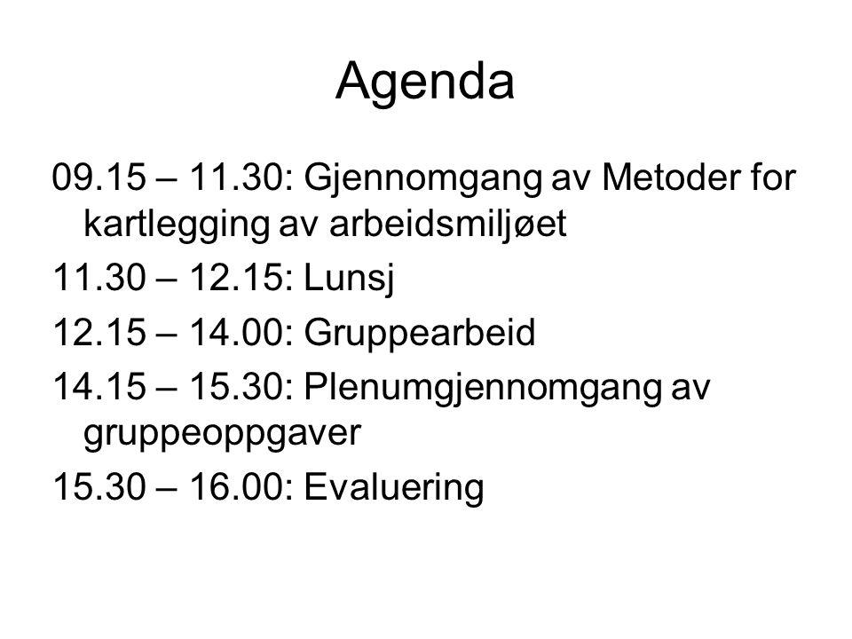 Agenda 09.15 – 11.30: Gjennomgang av Metoder for kartlegging av arbeidsmiljøet 11.30 – 12.15: Lunsj 12.15 – 14.00: Gruppearbeid 14.15 – 15.30: Plenumg