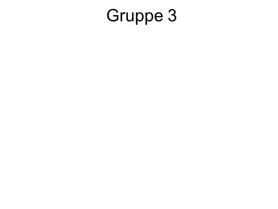 Gruppe 3