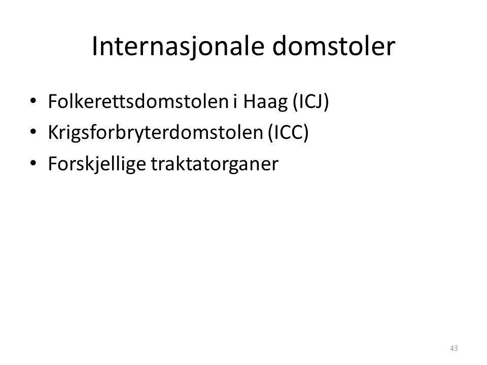 Internasjonale domstoler Folkerettsdomstolen i Haag (ICJ) Krigsforbryterdomstolen (ICC) Forskjellige traktatorganer 43