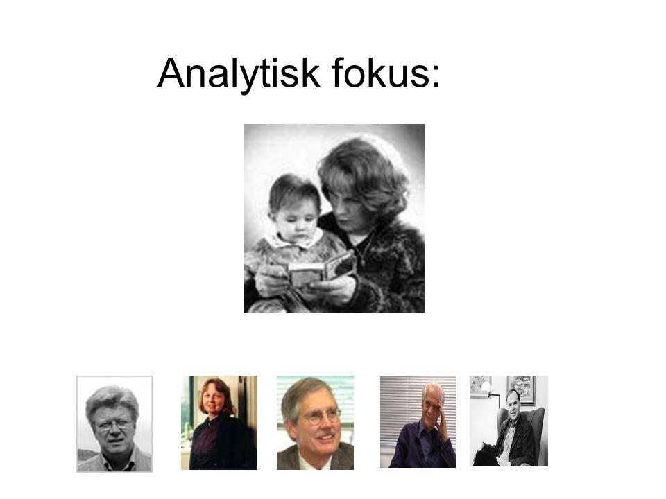 Analytisk fokus: