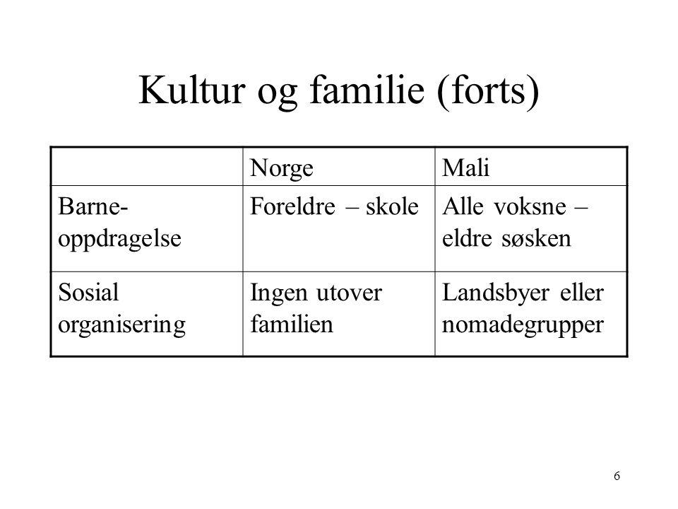 6 Kultur og familie (forts) NorgeMali Barne- oppdragelse Foreldre – skoleAlle voksne – eldre søsken Sosial organisering Ingen utover familien Landsbyer eller nomadegrupper