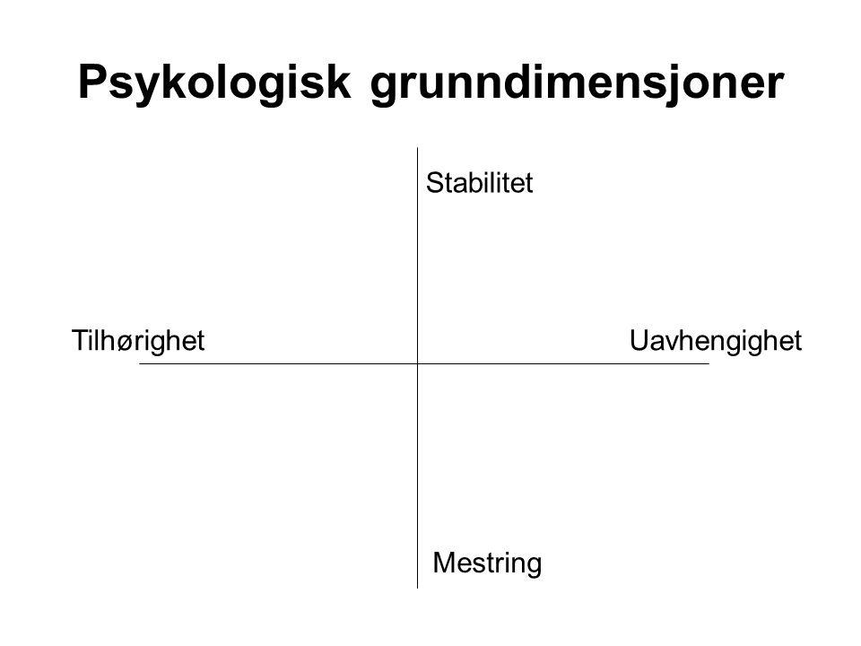Psykologisk grunndimensjoner TilhørighetUavhengighet Stabilitet Mestring