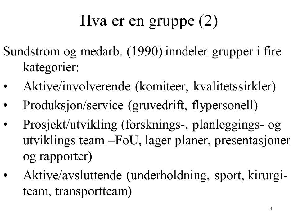 4 Hva er en gruppe (2) Sundstrom og medarb. (1990) inndeler grupper i fire kategorier: Aktive/involverende (komiteer, kvalitetssirkler) Produksjon/ser