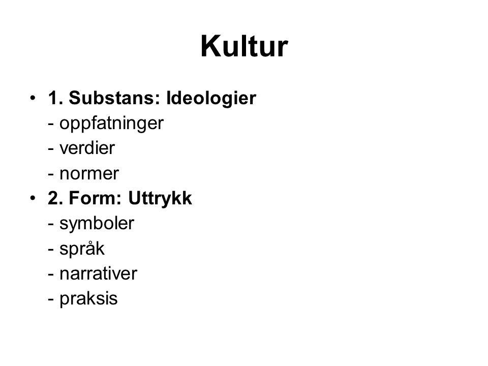 Kultur 1. Substans: Ideologier - oppfatninger - verdier - normer 2. Form: Uttrykk - symboler - språk - narrativer - praksis