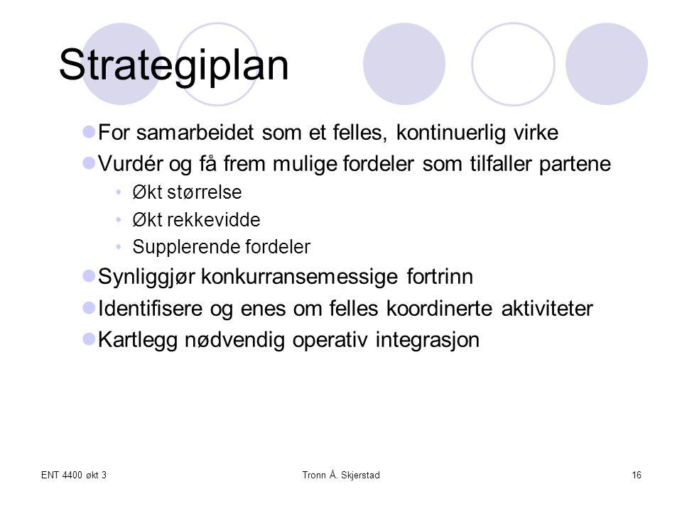 ENT 4400 økt 3Tronn Å. Skjerstad16 Strategiplan For samarbeidet som et felles, kontinuerlig virke Vurdér og få frem mulige fordeler som tilfaller part