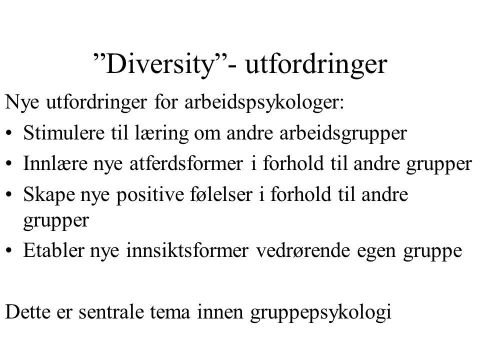 """""""Diversity""""- utfordringer Nye utfordringer for arbeidspsykologer: Stimulere til læring om andre arbeidsgrupper Innlære nye atferdsformer i forhold til"""