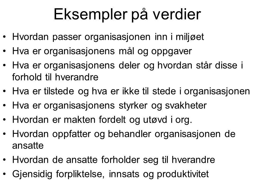 Eksempler på verdier Hvordan passer organisasjonen inn i miljøet Hva er organisasjonens mål og oppgaver Hva er organisasjonens deler og hvordan står d