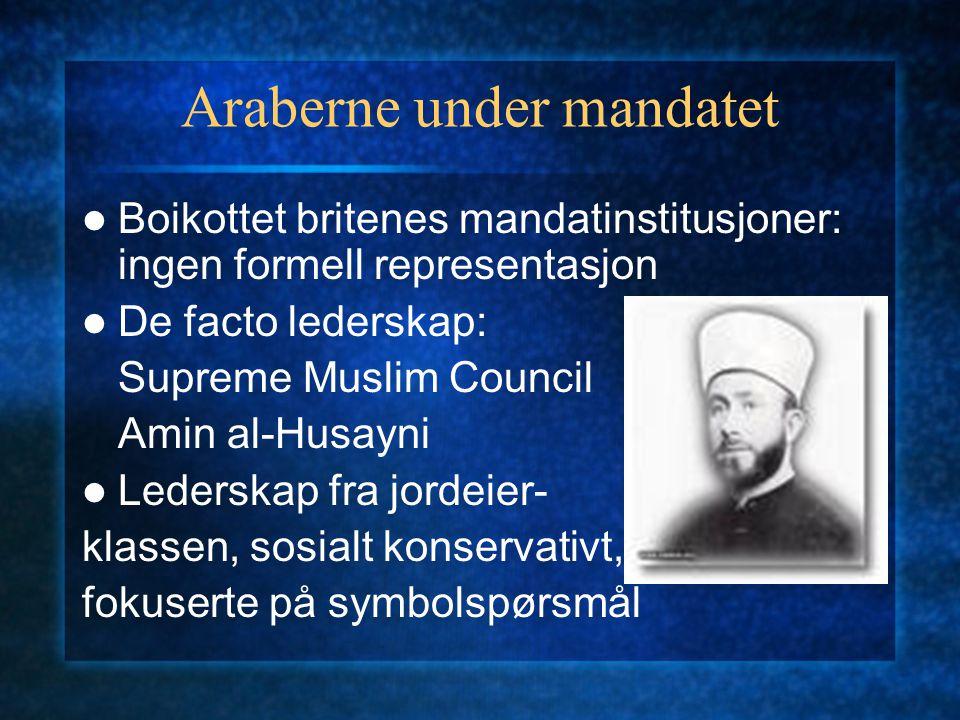 Araberne under mandatet Boikottet britenes mandatinstitusjoner: ingen formell representasjon De facto lederskap: Supreme Muslim Council Amin al-Husayn