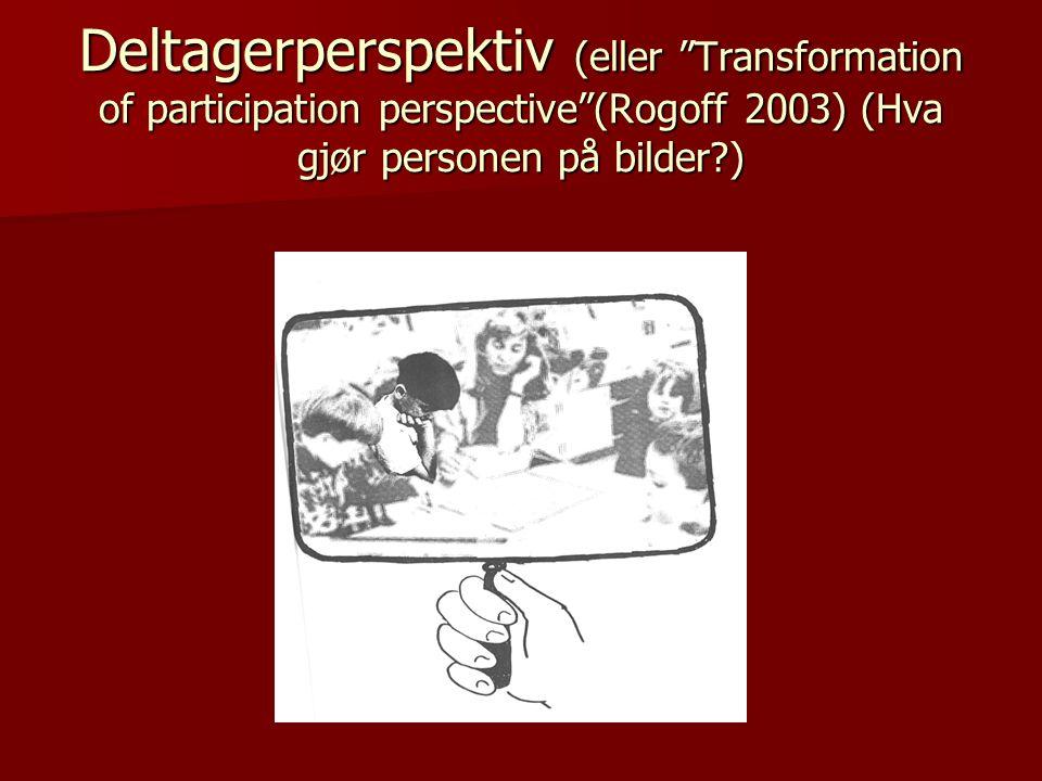 """Deltagerperspektiv (eller """"Transformation of participation perspective""""(Rogoff 2003) (Hva gjør personen på bilder?)"""