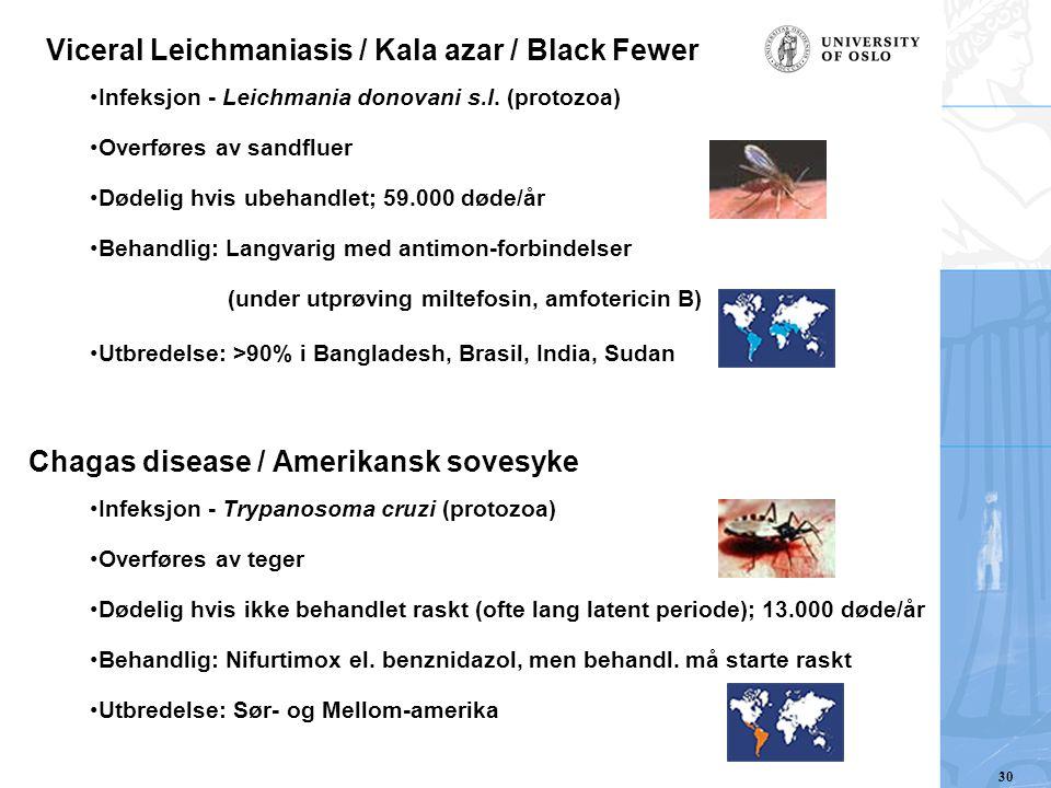 Viceral Leichmaniasis / Kala azar / Black Fewer Infeksjon - Leichmania donovani s.l. (protozoa) Overføres av sandfluer Dødelig hvis ubehandlet; 59.000