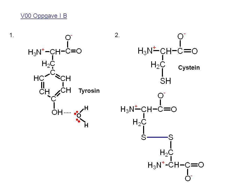 V00 Oppgave I B 1. H H O 2. Tyrosin Cystein