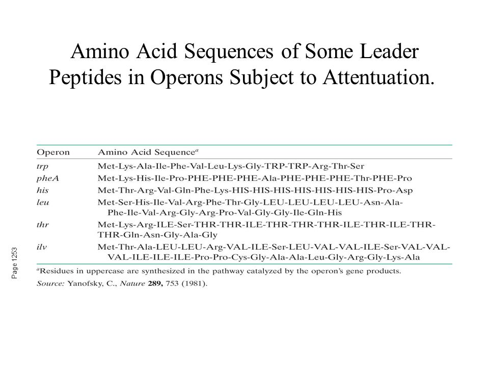 Amino Acid Sequences of Some Leader Peptides in Operons Subject to Attentuation. Page 1253