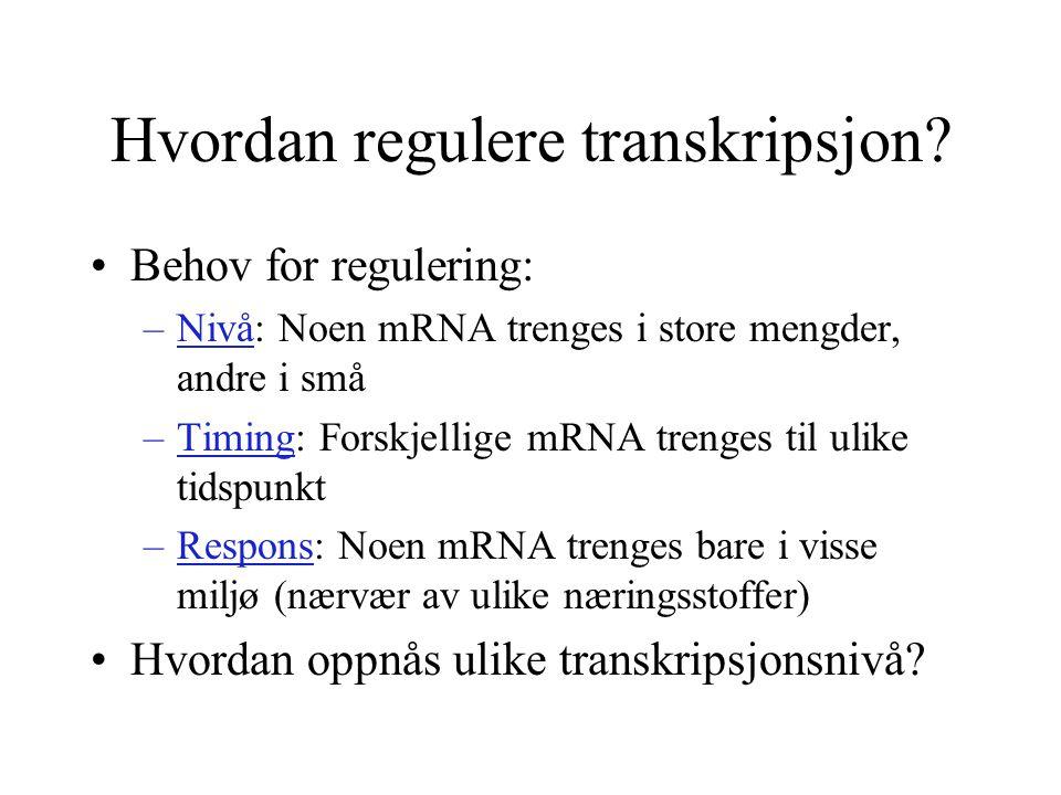 Hvordan regulere transkripsjon? Behov for regulering: –Nivå: Noen mRNA trenges i store mengder, andre i små –Timing: Forskjellige mRNA trenges til uli