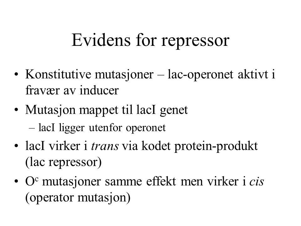 Evidens for repressor Konstitutive mutasjoner – lac-operonet aktivt i fravær av inducer Mutasjon mappet til lacI genet –lacI ligger utenfor operonet l