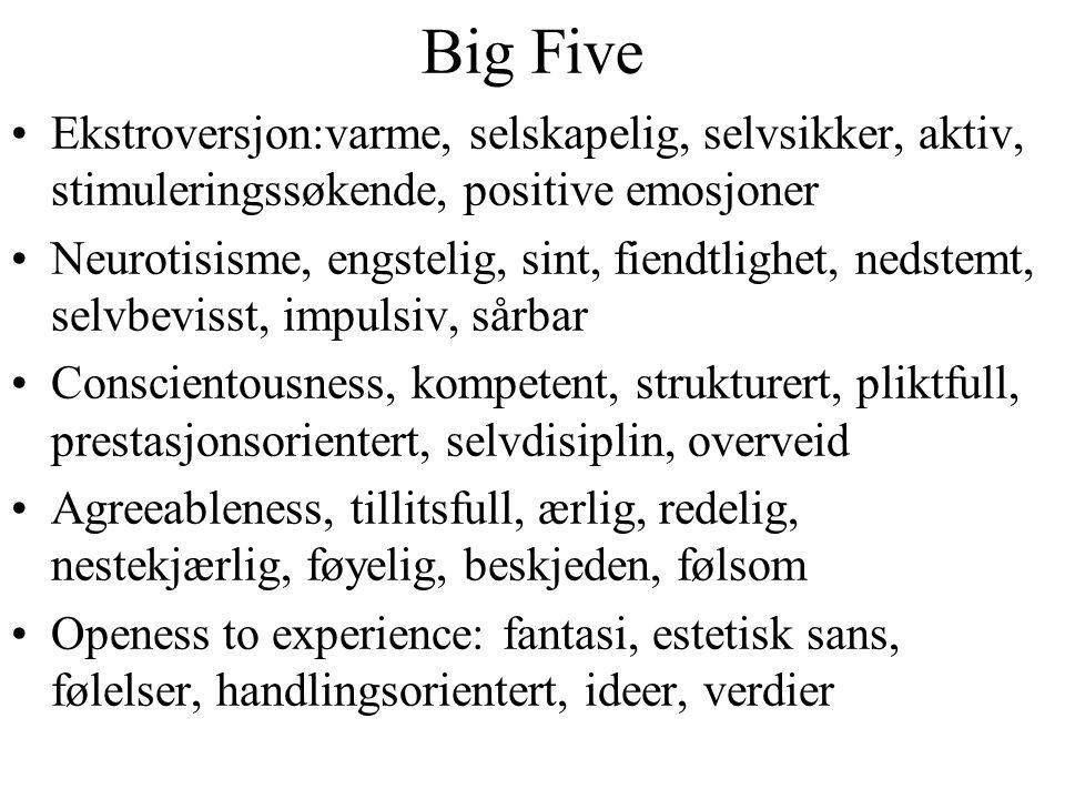 Big Five Ekstroversjon:varme, selskapelig, selvsikker, aktiv, stimuleringssøkende, positive emosjoner Neurotisisme, engstelig, sint, fiendtlighet, ned
