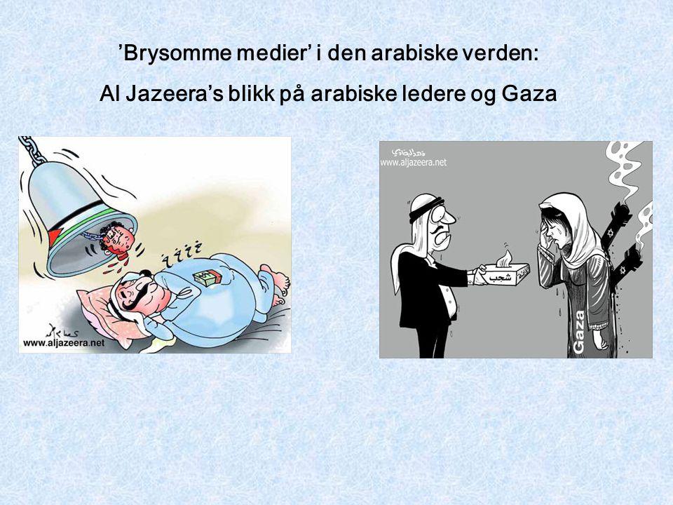 'Brysomme medier' i den arabiske verden: Al Jazeera's blikk på arabiske ledere og Gaza