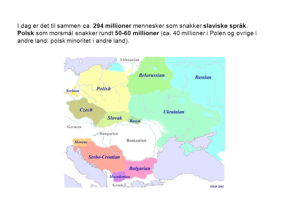 Den slaviske språkfamilien deles hovedsakelig i tre store grupper  vestslaviske språk: - polsk, tsjekkisk, slovakisk - dolnołużycki (Nieder-Lausitz i Øst-Tyskland): Cottbus-området (antas brukt av ikke mindre enn ca.
