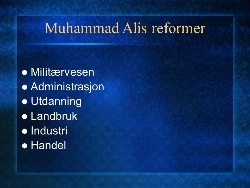 Muhammad Alis reformer Militærvesen Administrasjon Utdanning Landbruk Industri Handel