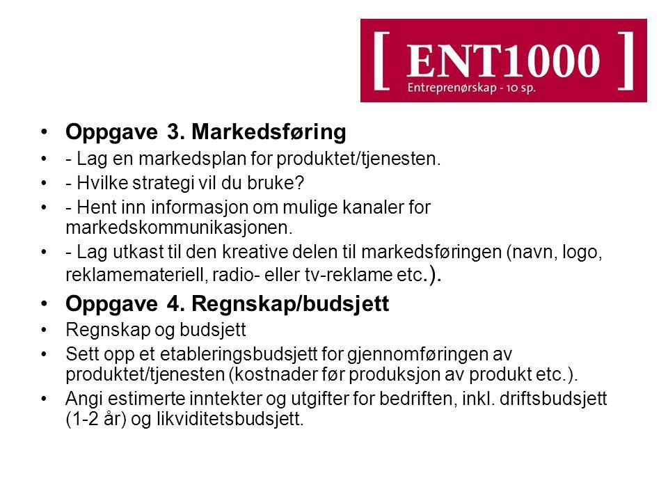 Oppgave 3. Markedsføring - Lag en markedsplan for produktet/tjenesten. - Hvilke strategi vil du bruke? - Hent inn informasjon om mulige kanaler for ma