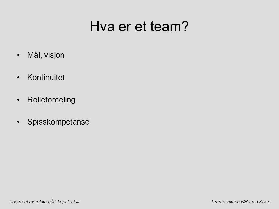 """""""Ingen ut av rekka går"""" kapittel 5-7Teamutvikling v/Harald Støre Hva er et team? Mål, visjon Kontinuitet Rollefordeling Spisskompetanse"""